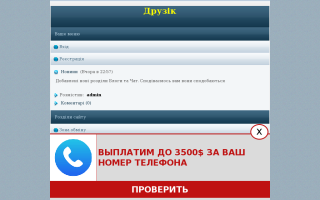 Скриншот сайта druzik.1wm.su